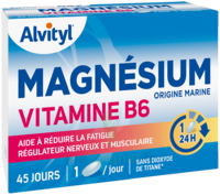 Govital Magnésium Vitamine B6 Comprimés B/45 à Cavignac
