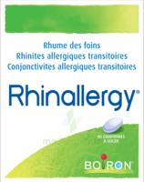 Boiron Rhinallergy Comprimés B/40 à Cavignac