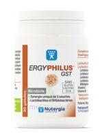 Nutergia Ergyphilus Gst Gélules B/60 à Cavignac