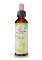 Fleurs De Bach® Original Wild Rose - 20 Ml à Cavignac