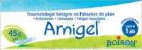 Boiron Arnigel Gel T/45g à Cavignac